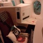 【JAL B789(E91)『SS9Ⅱ』ビジネスクラス】JL740:デリー(DEL)-東京/成田(NRT)